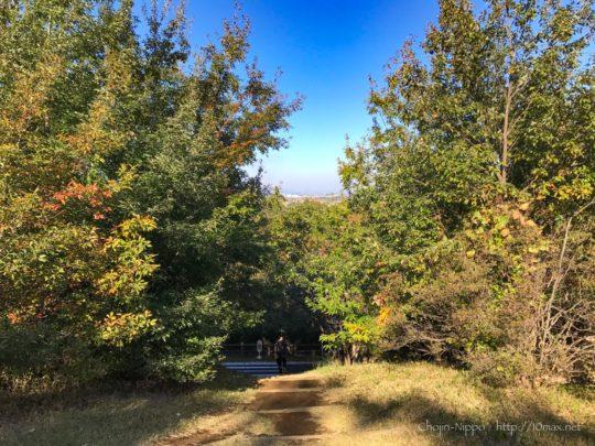 国営武蔵丘陵森林公園, 北展望所