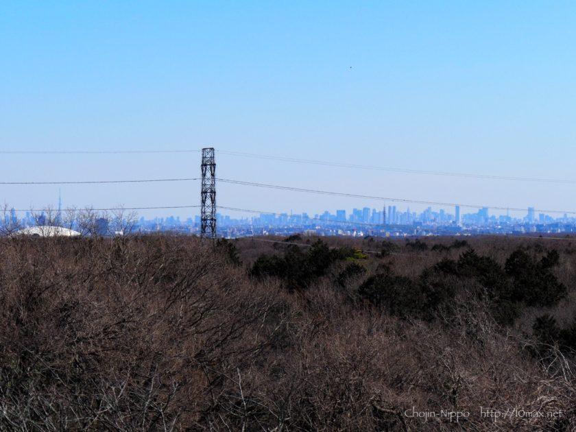 野山北・六道山公園 展望台