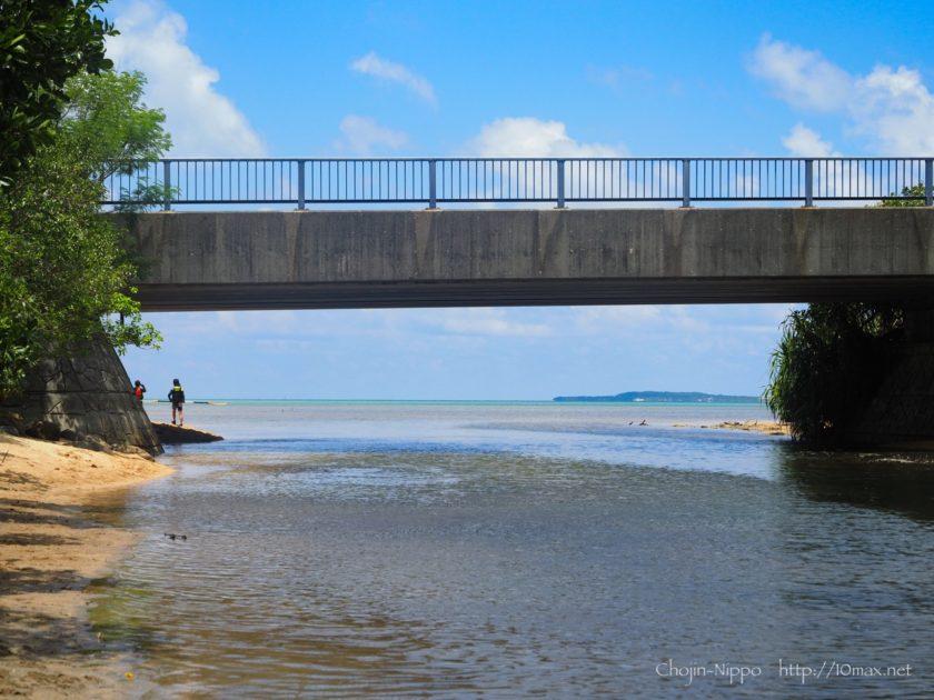 西表島 マングローブ カヌー ツアー 小浜島