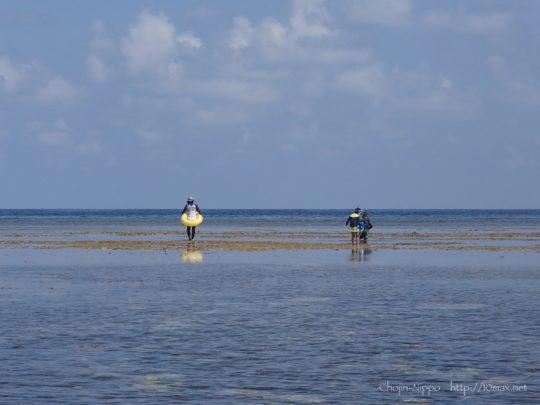 沖縄 石垣島 米原ビーチ シュノーケリング 珊瑚礁