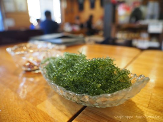 石垣島 南の島 沖縄料理 海ぶどう