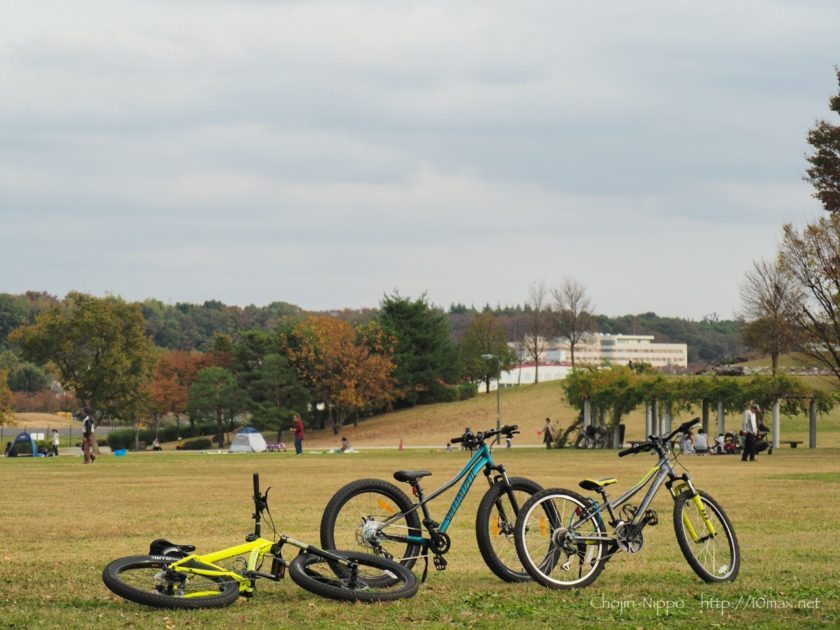 Specialized Riprock 24 Sagan Collection, Cannondale Cujo3, 武蔵野の森公園