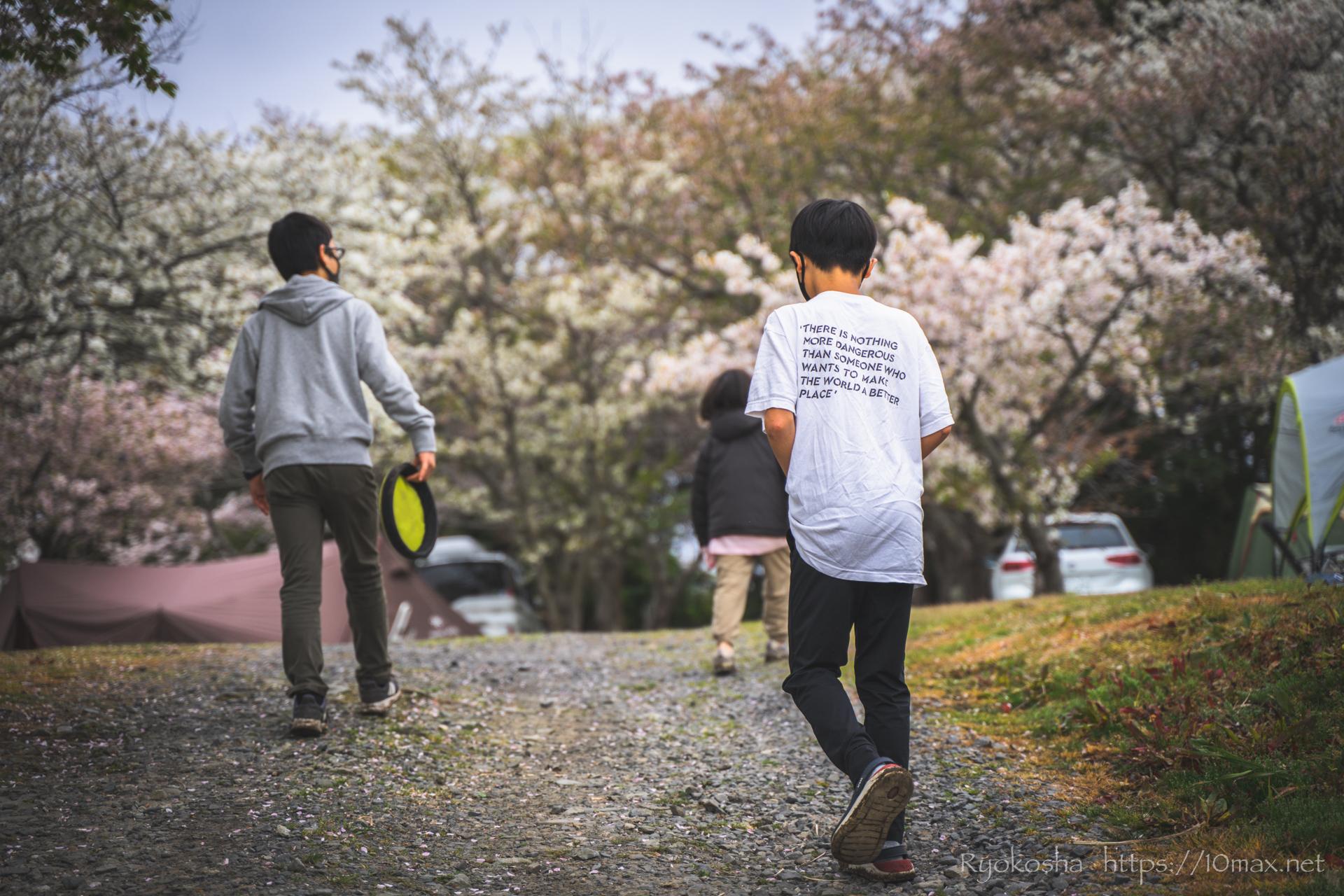 田の上キャンプ場 茨城 大洗 阿字ヶ浦 海 桜