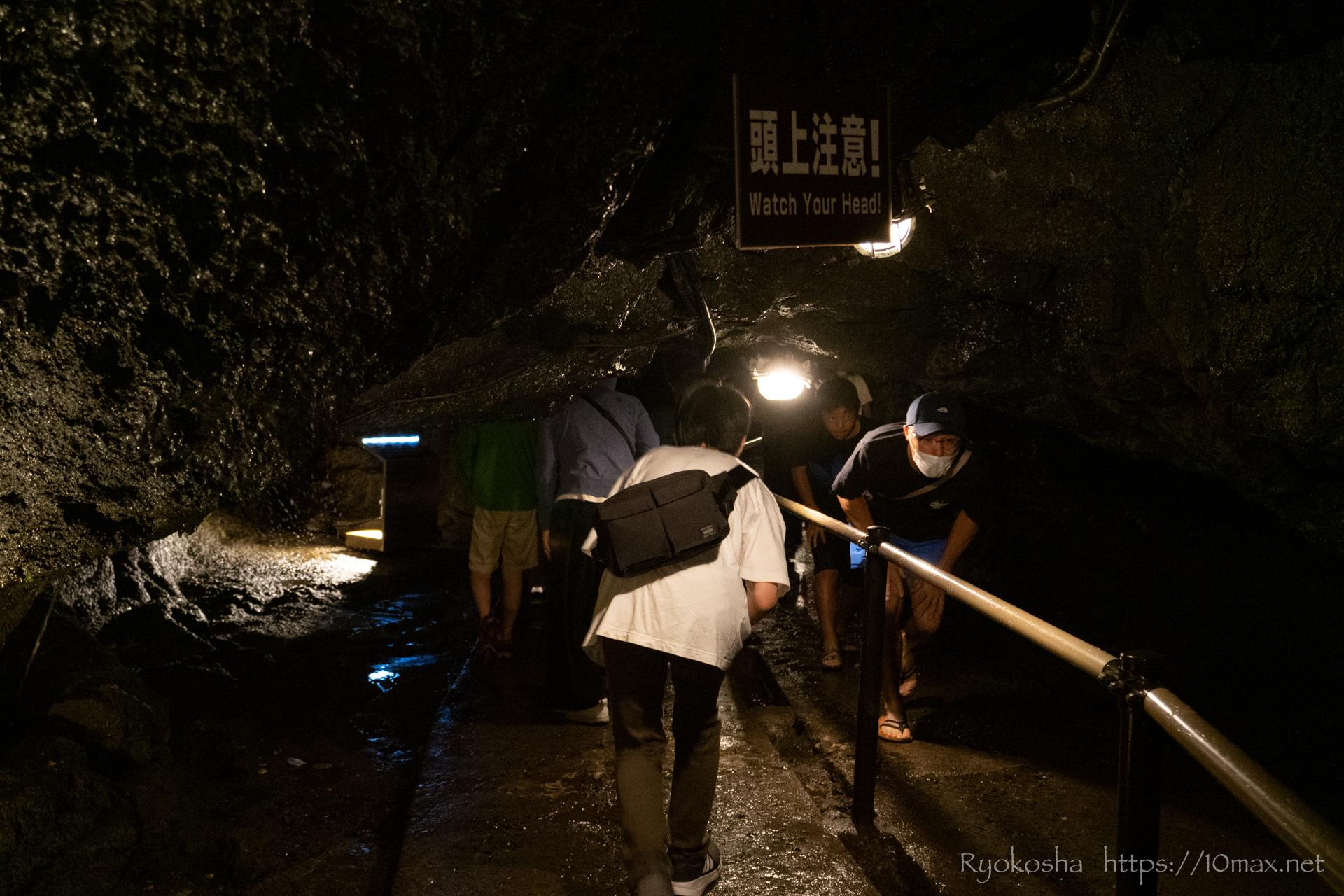 青木ヶ原樹海 富士の樹海 富岳風穴
